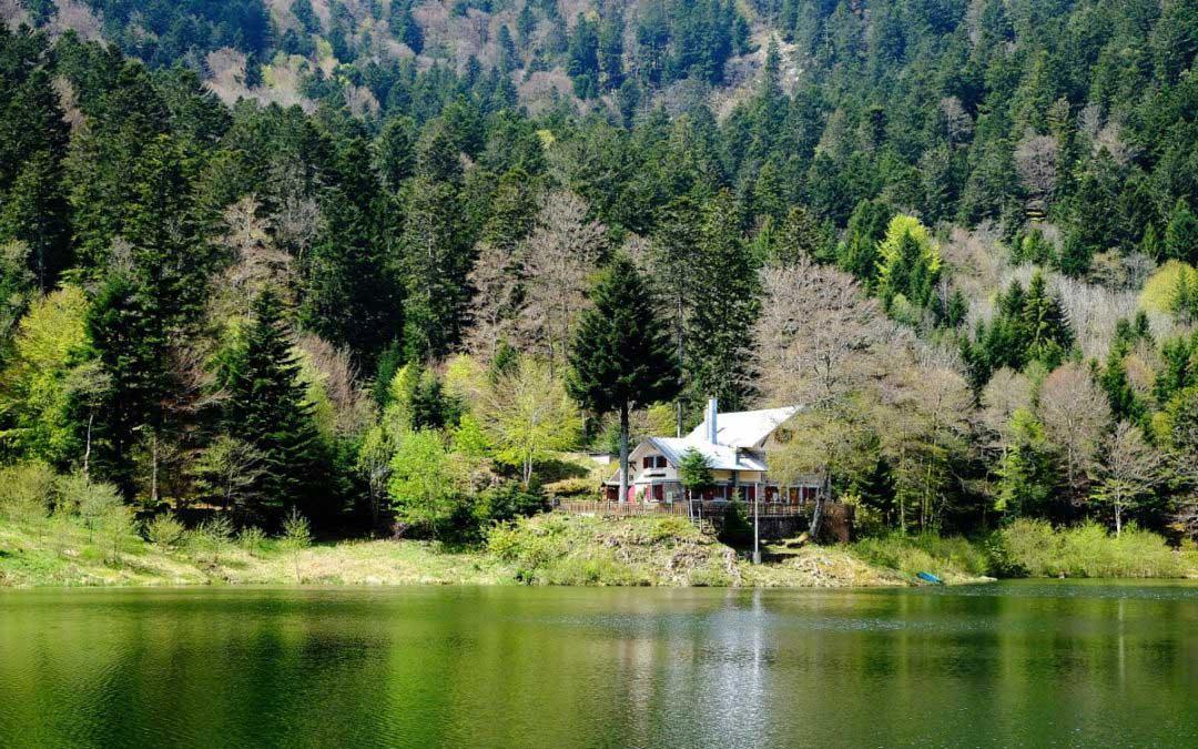 Tagestour: Wandern rund um den Lac Neuweiher (Elsass, Südvogesen)