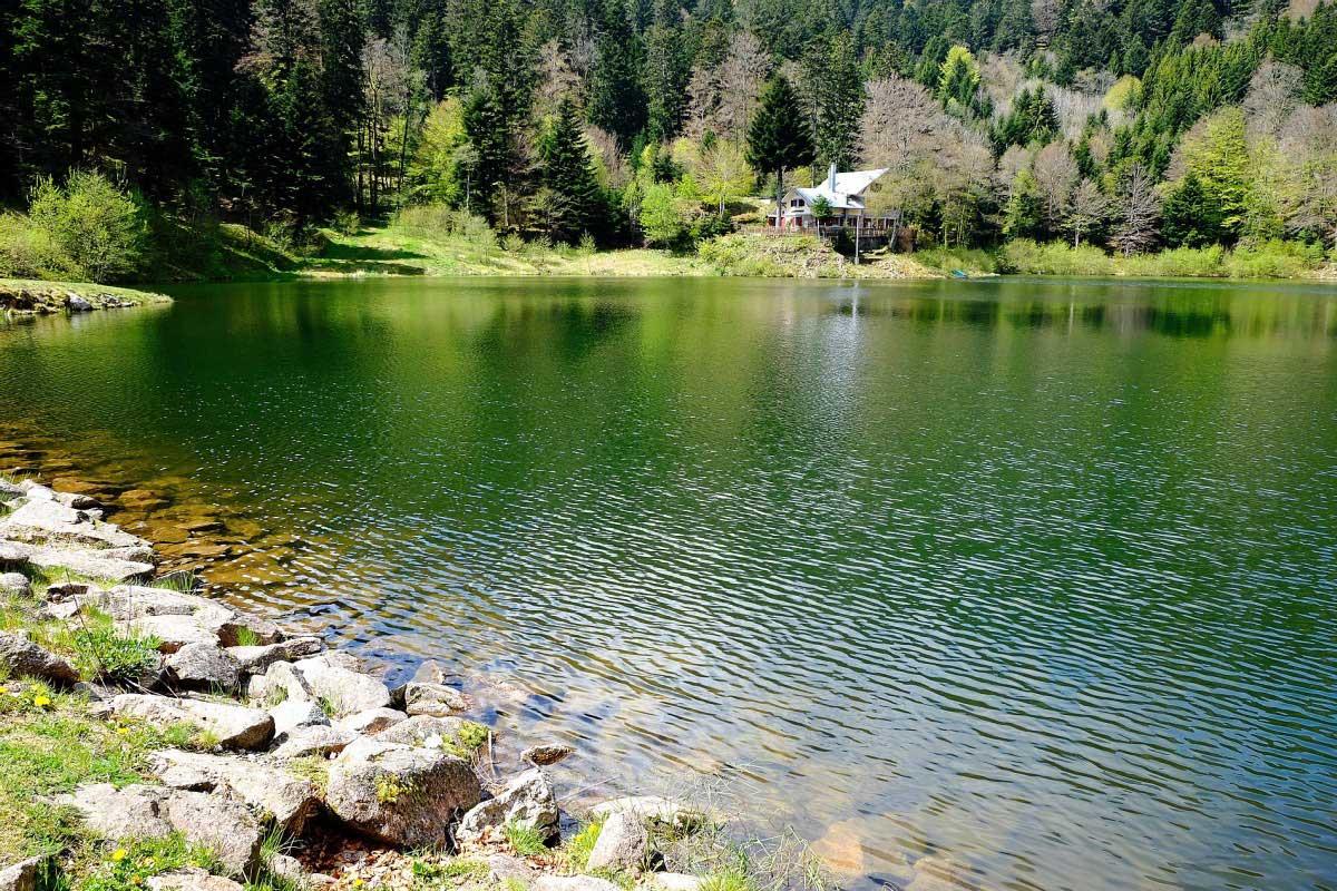 Elsass Vogesen Wanderung Lac Neuweiher