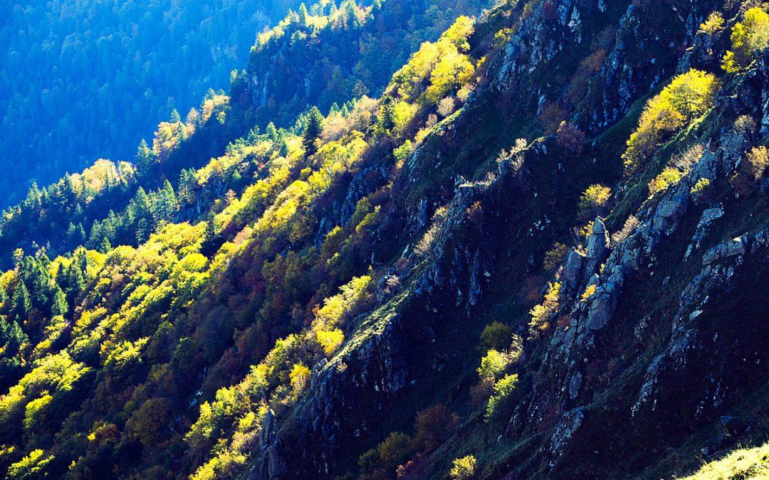 Sentier des Roches (Felsenweg) – Le Hohneck