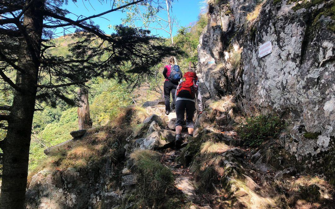Empfehlenswerte Tourenführer für Wanderungen im Elsass und in den Vogesen