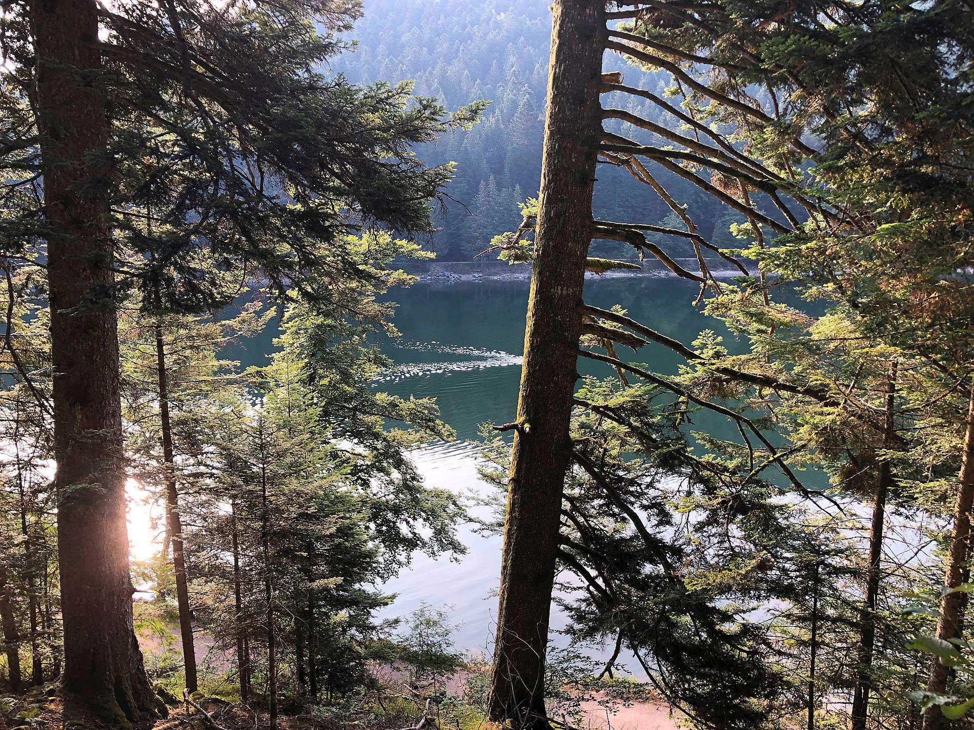 Wasser aus einem See eignet sich nicht als Trinkwasser